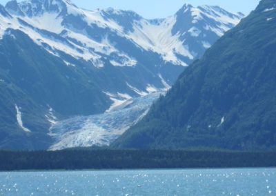 View of Davidson Glacier from Seduction Pt. Trail.